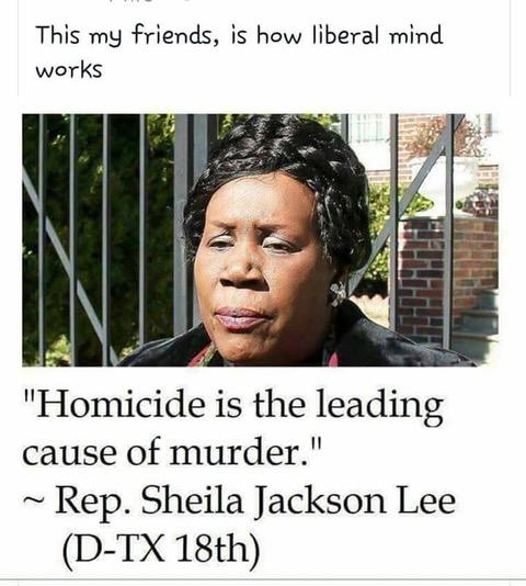 Pelosism 6 Sheila Jackson Lee
